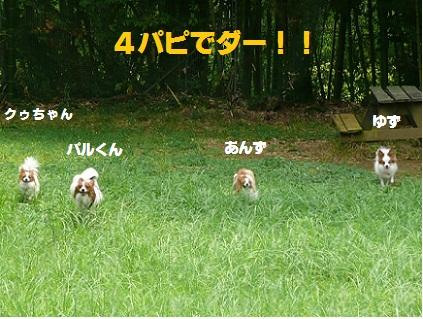 b20100813-2.jpg