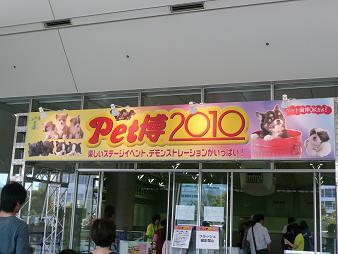 b2010521.jpg