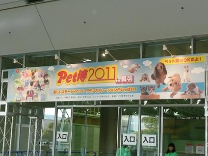 b201101091.jpg