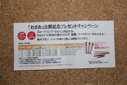 b201103102.jpg