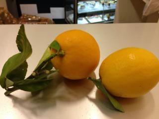 葉付きレモン