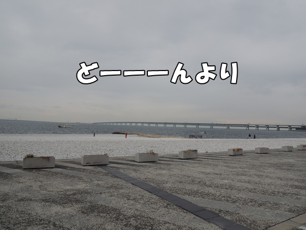 DSCN857620140106.jpg