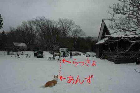 ramori_庭ハーテ#12441;ィンク#12441;