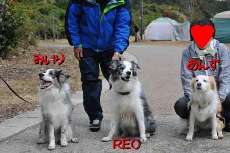 Reo_miili2.jpg