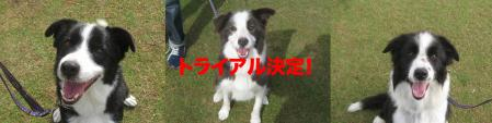 bajiru_time.jpg