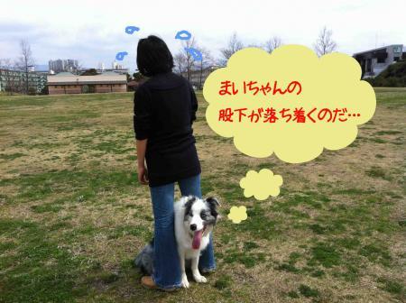 mai_3.jpg