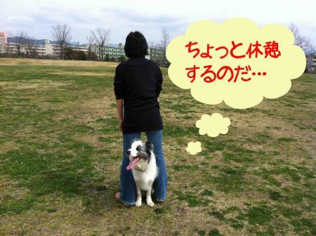 mai_4.jpg