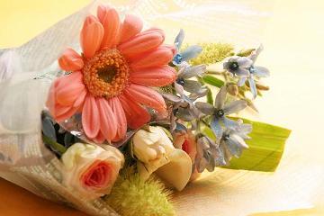 flower_top[1]