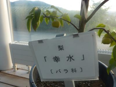 螳カ蠎ュ闖懷恍+063_convert_20110928105906