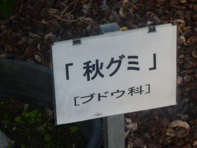 螳カ蠎ュ闖懷恍+067_convert_20110928110313
