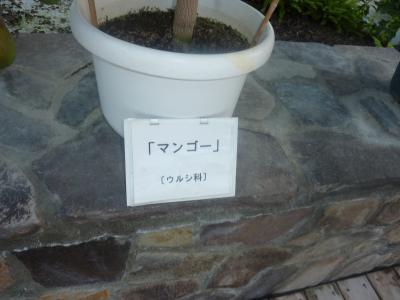 螳カ蠎ュ闖懷恍+084_convert_20110928113410
