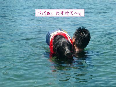CIMG8427_20100719013830.jpg