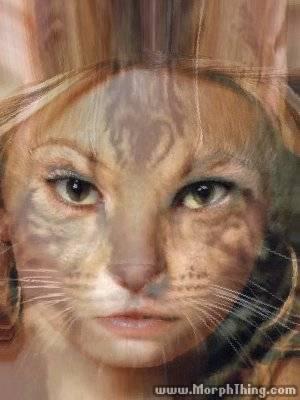 Britney-Spears--DSCF4644-JPG.jpeg