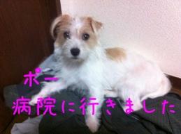 fc2blog_20121011191347924.jpg