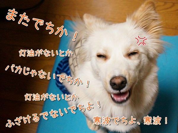 20140111_6.jpg