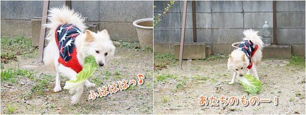20140127_4.jpg