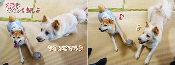 20140130_5.jpg