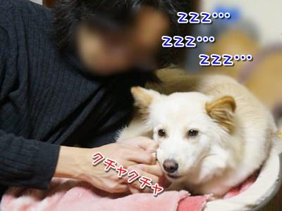 20140131_7.jpg