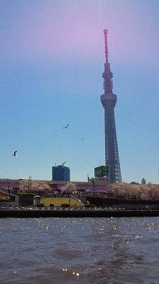 s-H24年4月8日隅田川花見ジェット