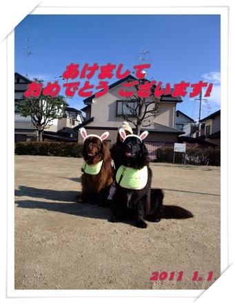 2011_0101ohakamairi0014a.jpg