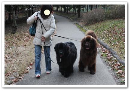 2011_0104kouen0074.jpg