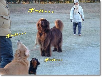 2011_0116kouen20017.jpg