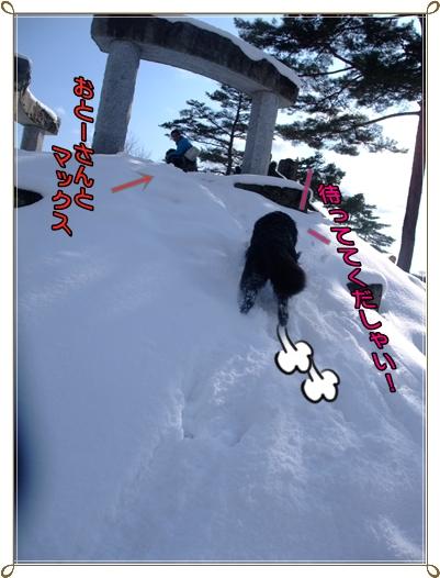 2011_0118yukiasobi0191.jpg