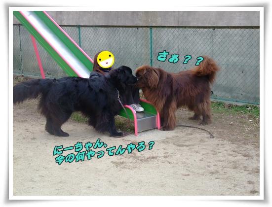 2011_0122osanpo01220020.jpg
