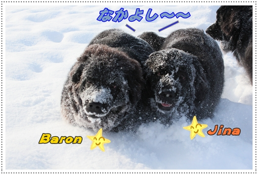2011_0126takayama0044.jpg
