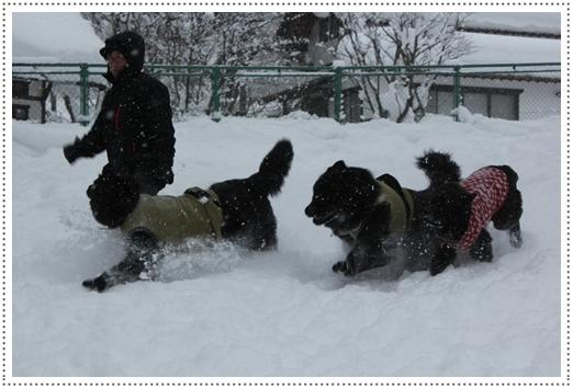 2011_0126takayama0142.jpg