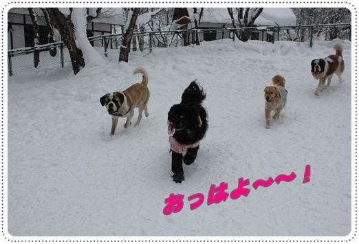 2011_0126takayama0375.jpg