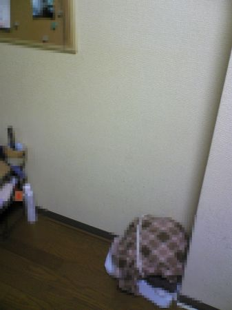 Image071_450.jpg