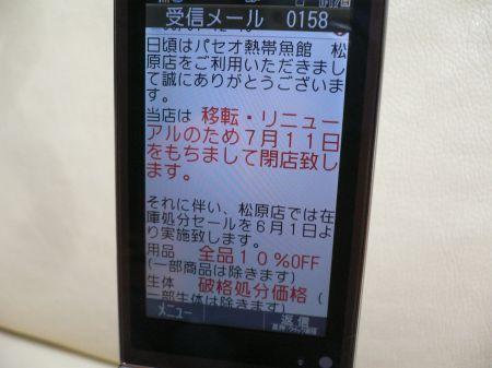P1130594_450.jpg