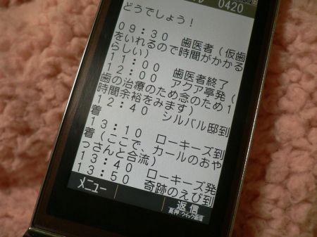 P1150254_450.jpg