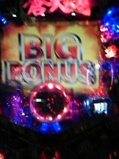 DVC00016  BIG BONUS