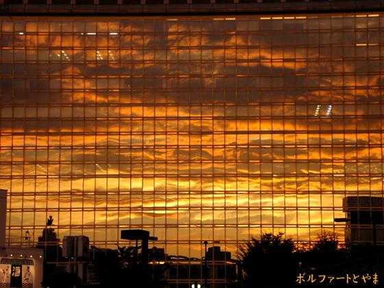 ビルのガラスに映った夕焼け