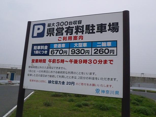 P5090876.jpg