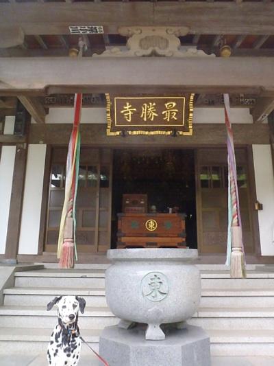 fc2blog_20120611195221420.jpg