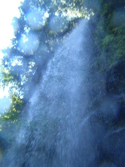 fc2blog_201208271410300b2.jpg