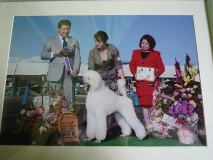 2yukito20111111a
