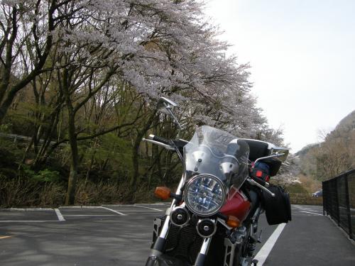 ソロキャン95