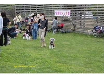 0985(縺ヲ縺後″1)+・コ・具セ滂スー1_convert_20120616133723