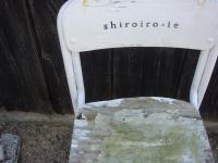 shiroiro(20100502).jpg
