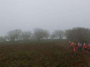661霧の中を走行