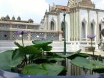 エメラルド寺院睡蓮の花