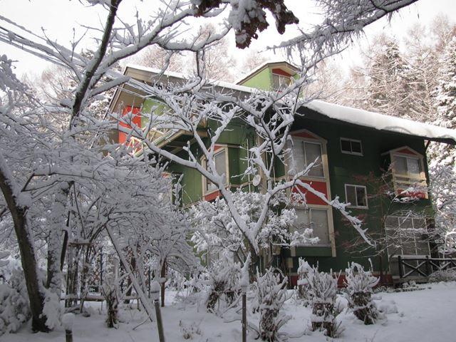 今朝の雪 これは根雪になるぞ