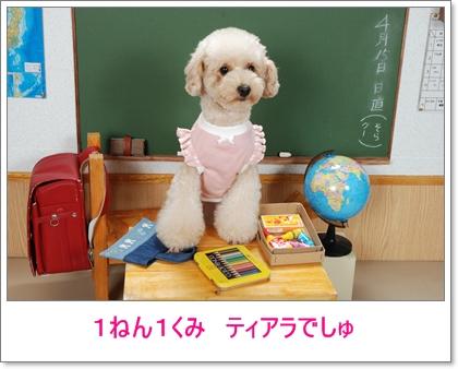 公開~♪♪ うちの子 カレンダー2011