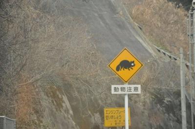 04  動物注意