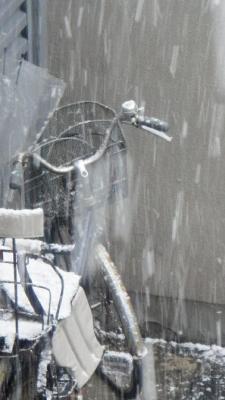 04 自転車雪