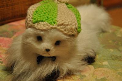 04  ニット帽ネコ